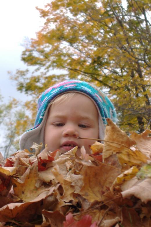 First Leaf Pile