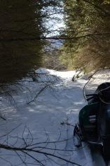 Sledding Thursday Trail
