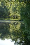 Engleville Pond