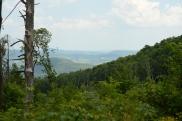 Schoharie Valley